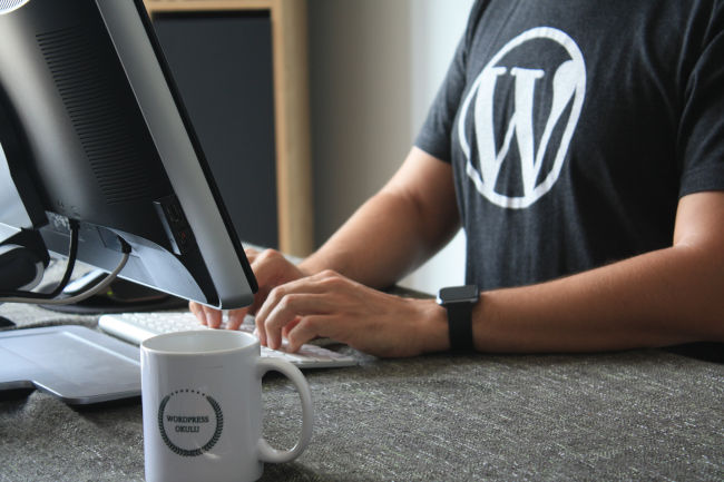 wordpress coder