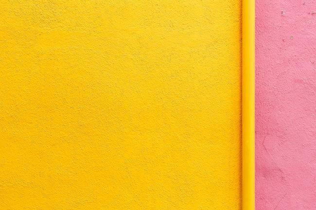 web design trends color